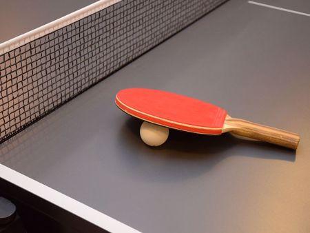 Immagine per la categoria Ping pong e Biliardo