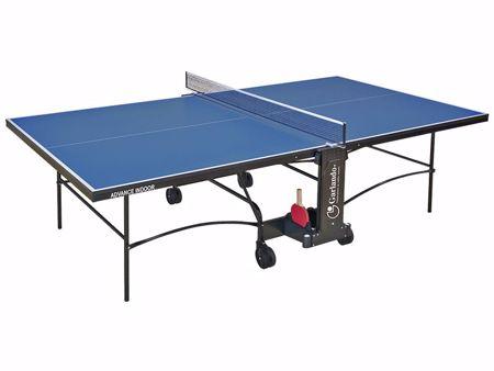 Immagine per la categoria Tavoli da ping pong